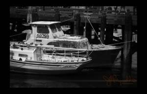 Boats, Morro Bay, 2009