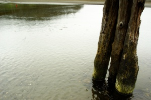 Ocean Shores, Iron Springs Pier 04, 2010-08-03