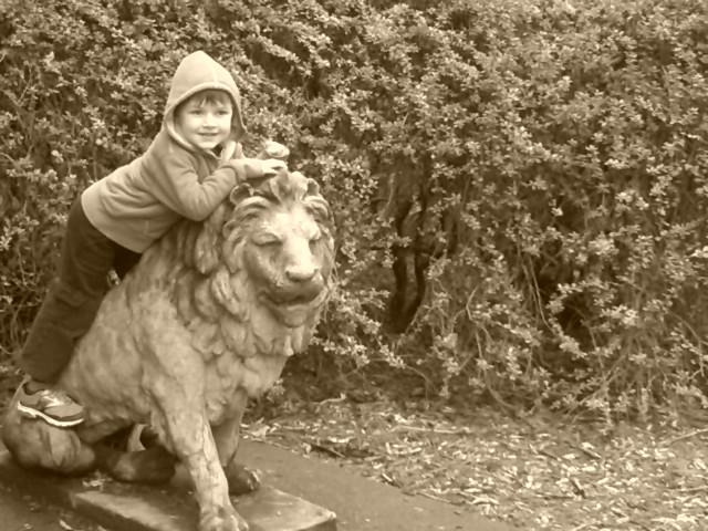 Jesse, Woodland Park Zoo