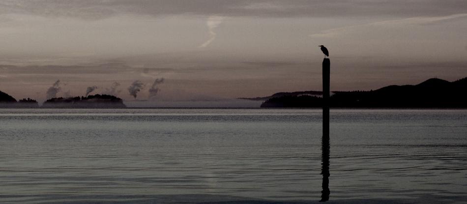 2013-10-06-heron-2930x1280