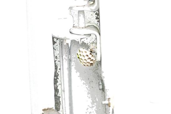 Wasp Nest [wallpaper]