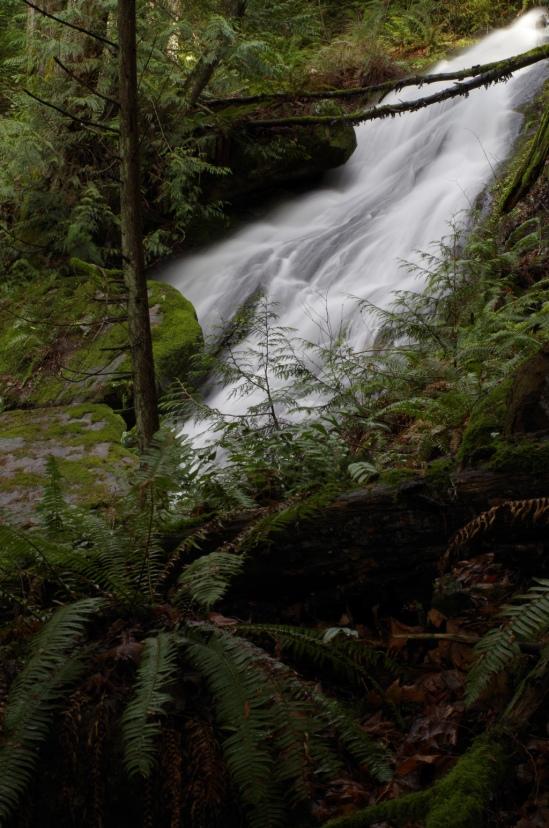 Fragrance Lake Waterfall